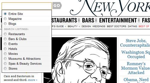 ny magazine Showcase of Beautiful Search Box UI Designs