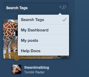 tumblr Showcase of Beautiful Search Box UI Designs